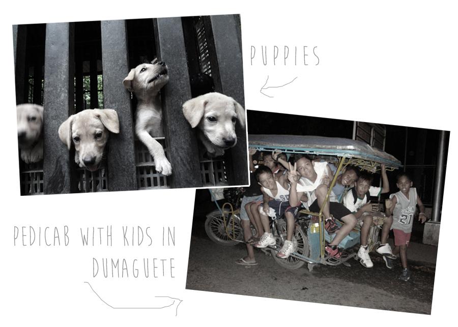 pupps kids